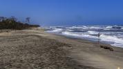Karibiska kusten