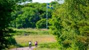 Kattegattleden_Swedish_flag-14