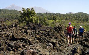 Med Teide