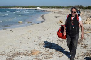 Enric plockar svamp på stranden