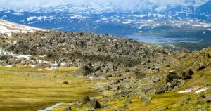 Stendalen